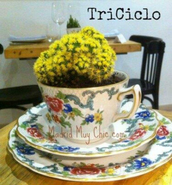 Triciclo taza