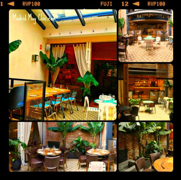 la contraseña patio Collage