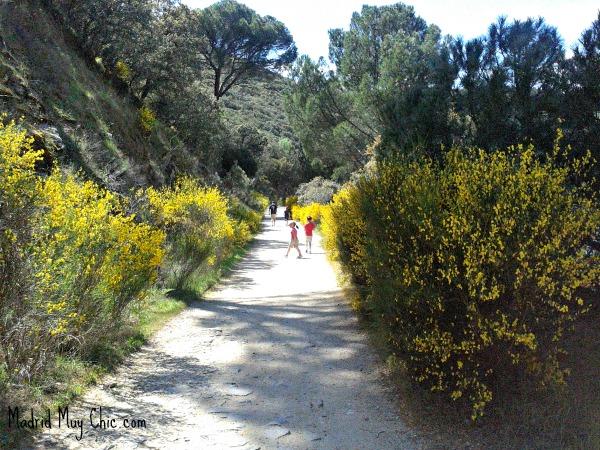 Aficionar a los niños al senderismo es aficionarles al deporte y a disfrutar de la naturaleza
