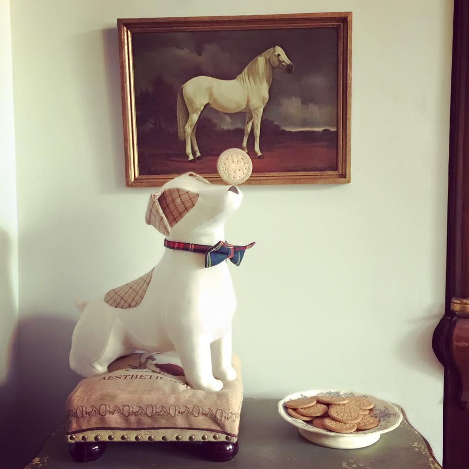 El perro Claudio