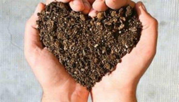corazon tierra