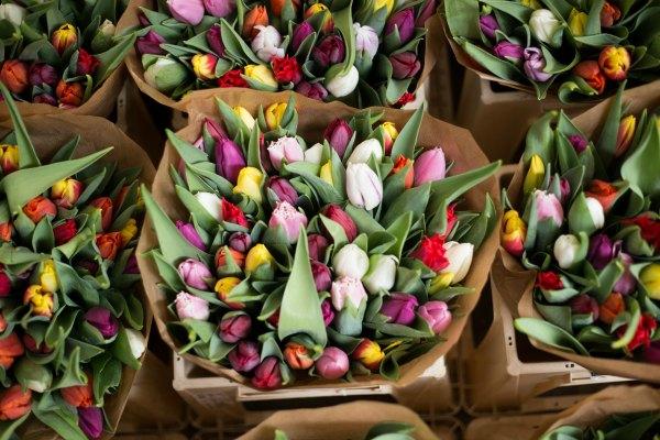 MMC mercado flores 1