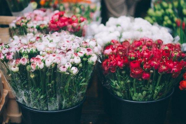 Por segundo año consecutivo se celebra el Mercado de las Flores en Madrid